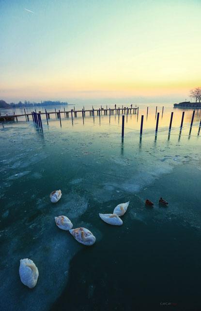 by Duc Thai  Vietnam
